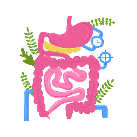 Vector isolated illustration anatomical organ of gastrointestinal tract against background metaphorical pipes, plant elements. Concept gastroenterology, nutrition, probiotics, diseases. Ilustracja