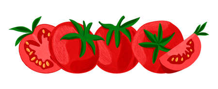 Vector isolated illustration with a set tomatoes