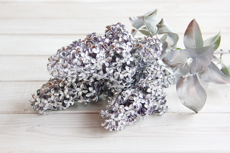 Silver branch of lilac on the table Imagens
