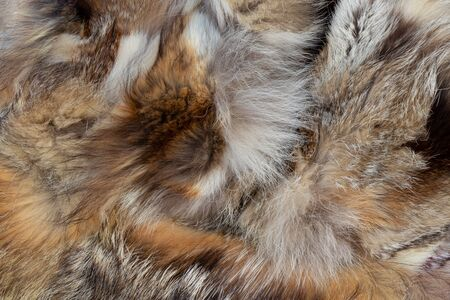 fur coat from pieces of fur of different animals as a background