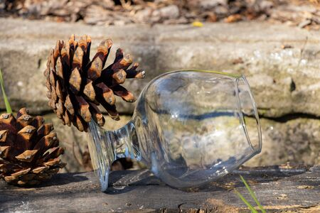 an empty transparent glass goblet stands on the ground