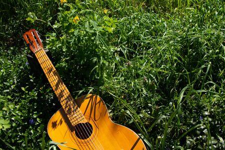 wooden brown guitar lies in wildflowers in spring in Ukraine 스톡 콘텐츠