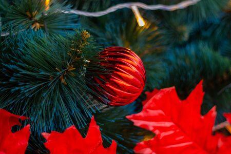 Christmas tree on the street as a background Reklamní fotografie