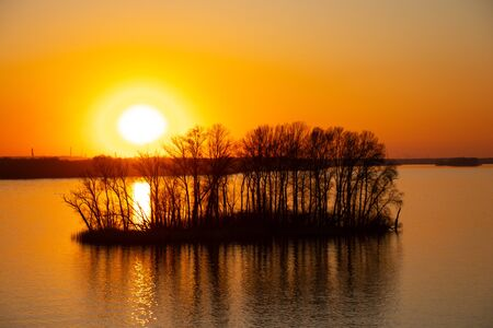 sunset on the banks of the Dnieper river among trees in Ukraine in the Dnieper cities