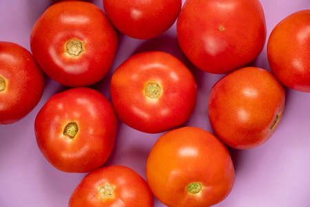 a lot of red tomato on isolated purple background close up 版權商用圖片