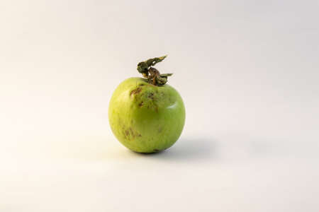 old rotten green apple on a white background close-up