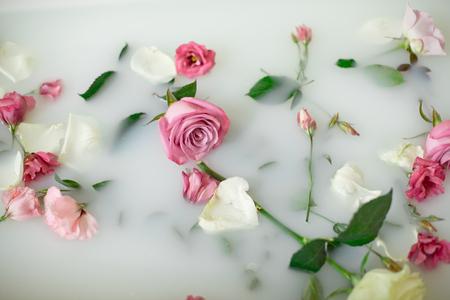 Troebel zeepachtig water in bad met roze en witte rozen en bloemblaadjes van boven gezien in volledig frame Stockfoto