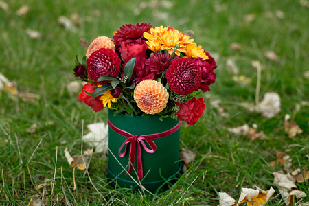 Flower arrangement in a box, a pot with pink, red, orange, marsala for a girl as a gift with roses, asters, freesia, Eucalyptus on a background of lawn and greenery. Standard-Bild