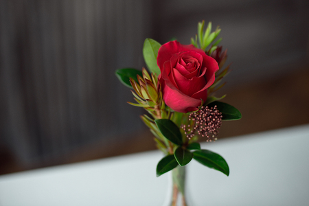 Red rose in a vase on a table with a white tablecloth. Stock fotó