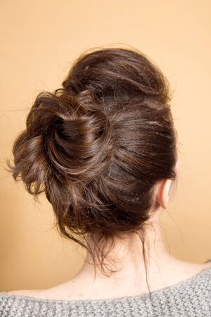 Rear view of female hairstyle middle bun with brown hair. Stock Photo