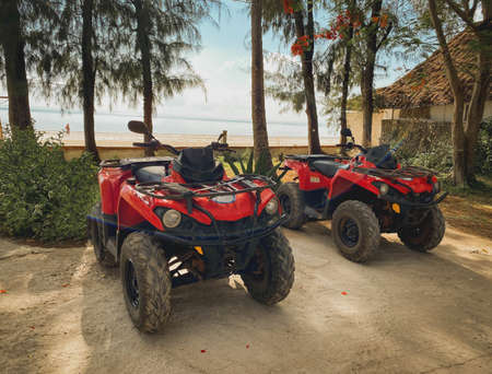 Red ATV on the background of a tropical landscape Reklamní fotografie