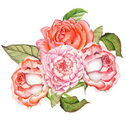 Botanical watercolor drawing of a bouquet of roses on a white background.