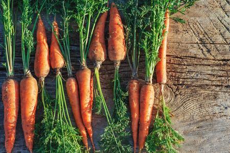 Zanahoria cosechada fresca en una tabla de madera en jardín. Vegetales vitaminas queratina. La zanahoria orgánica natural miente en un fondo de madera. Vista superior plana Lay. Estilo rústico Conceptos de Country Village Agriculture