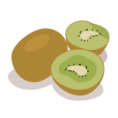 kiwi fruit: Ilustraci�n de kiwi, kiwis Vectores