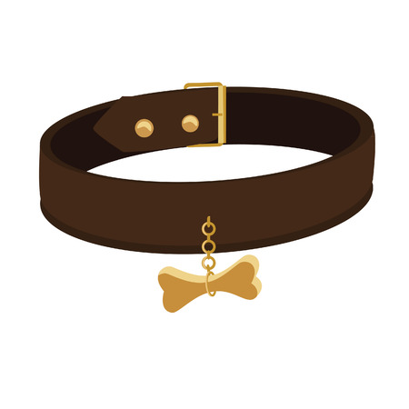 collar: Brown leather dog collar tag vector icon isolated, belt, pet collar, safety and security