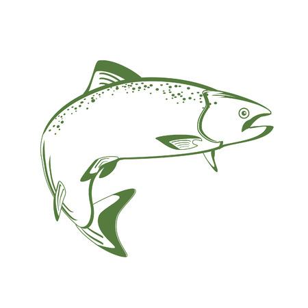 연어 물고기 벡터 화이트, 빈티지, 디자인에 고립 된