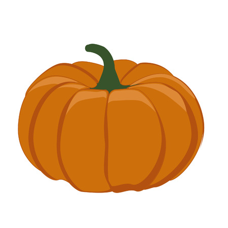 dynia: Pumpkin vegetable, pumpkin isolated, big pumpkin, halloween
