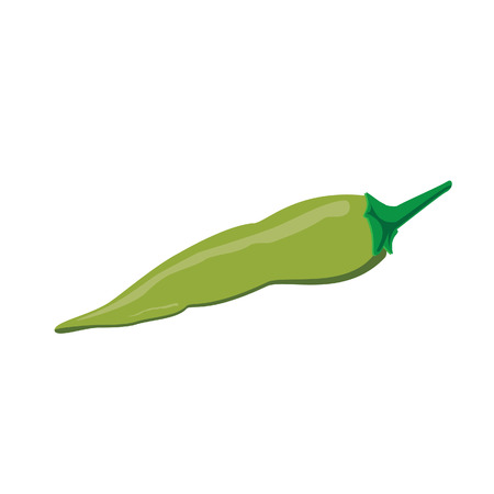 Green pepper, green pepper isolated, chilli pepper, green chilli pepper Illustration