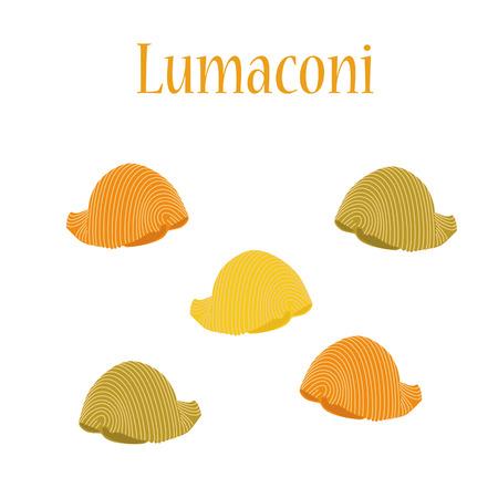 macaroni: Lumaconi pasta vector isolated, macaroni icon, pasta collection