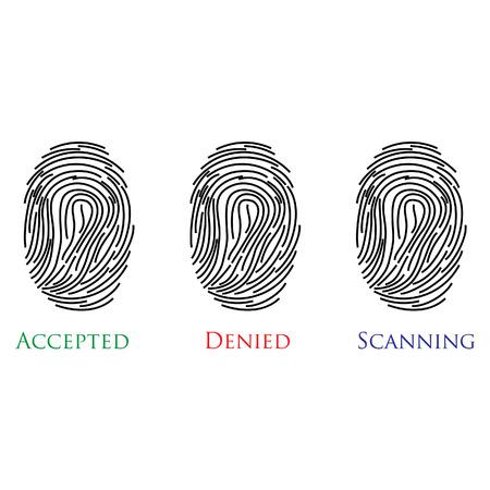 denied: Conjunto de tres huellas dactilares con el texto aceptado, negado, ilustraci�n vectorial de exploraci�n Vectores