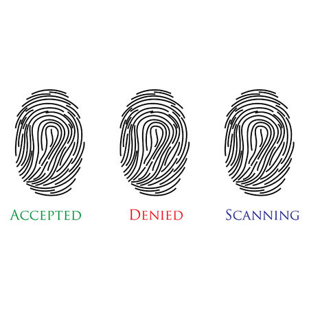 accepted: Set of three fingerprints with text accepted, denied, scanning vector illustration