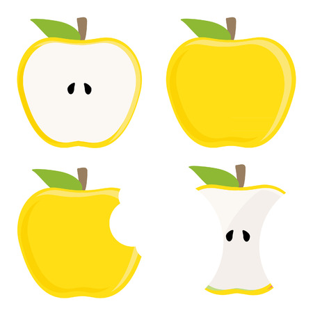 Whole yellow apple, half apple, apple stump and bitten apple vector set, healthy food, fresh fruit Illustration