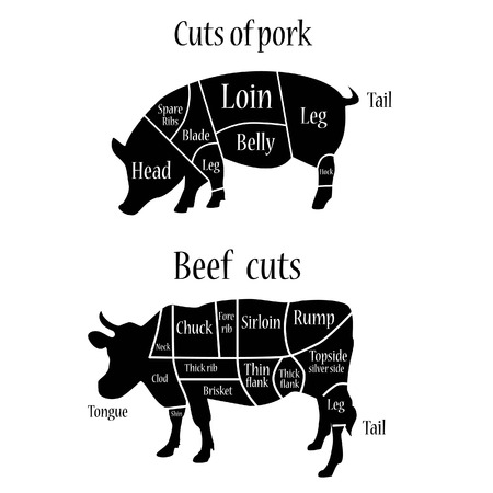 Vector illustration of graphic element on the menu for meat steak cow pig divided into pieces of meat. Beef cuts butcher chart.  Cuts of pork