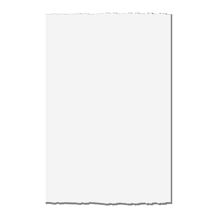 torn edge: Vector illustration of white paper with torn edge. Notebook paper