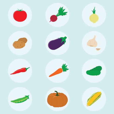 pumpkin tomato: Vegetables icons flat set with radish pumpkin potato carrot tomato onion garlic cucumber eggplant vector illustration isolated on blue background