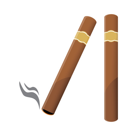 burning paper: Vector illustration of a luxury Havana cigar with label. Cigar. An expensive cigar. Illustration