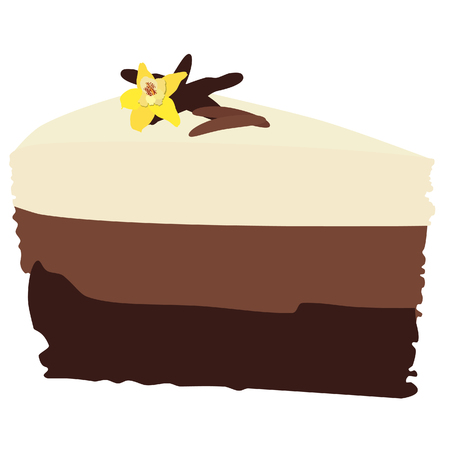 chocolate cake: Chocolate cake, chocolate cake slice, chocolate cake isolated, vanilla