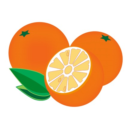 naranja fruta: Ilustraci�n de frutas de color naranja, fondo naranja, fruta, rodaja de naranja
