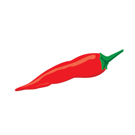 red pepper: Red pepper, red pepper isolated, chilli pepper, red chilli pepper