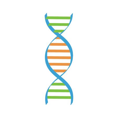 Vector illustration ADN spirale. Symboles d'ADN icône. Signe génétique, élément