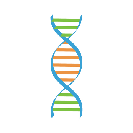 heredity: Vector illustration dna spiral. Dna symbols icon. Genetic sign, element