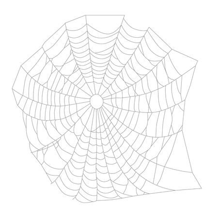 spider  net: illustration white spider web, net. Halloween symbol Illustration