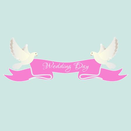 paloma blanca: Paloma del blanco con la cinta rosada, d�a de boda, invitaci�n, palomas blancas