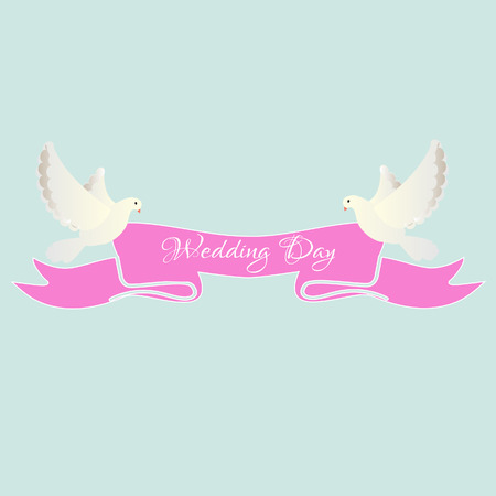 white dove: White dove with pink ribbon, wedding day, invitation, white doves Stock Photo