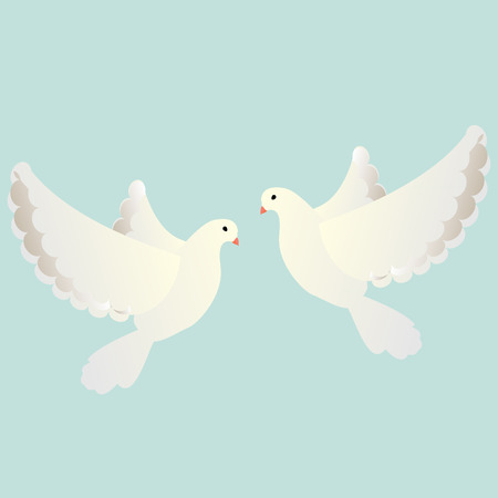 hope symbol of light: Pigeon flying, white pigeon, pigeon isolated, white dove flying, white dove, white bird, white dove isolated