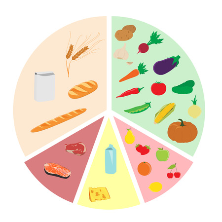 raster illustration plan of healthy eating nutrition chart. Fruits vegetables milk and cheese whole grains  meat and fish