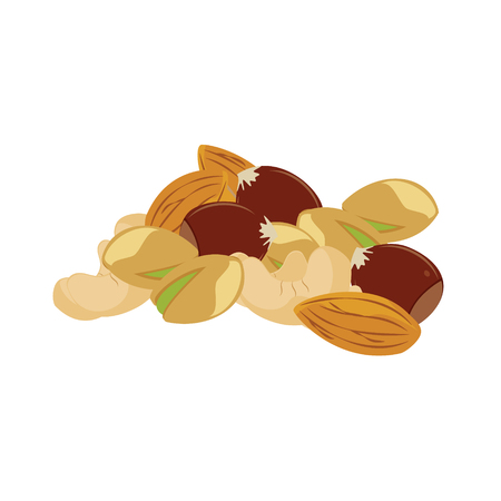 mixed nuts: raster illustration assorted mixed nuts. Hazelnuts, cashew, almond and pistachio