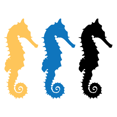 sea horse: Vector illustration set of black, orange and blue silhouette of sea horse. Seahorse icon isolated on white background.