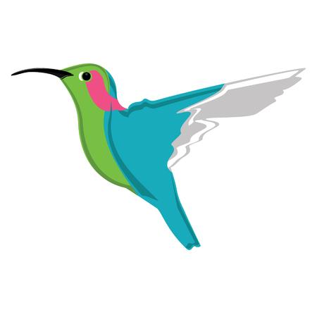 humming: Vector illustration small exotic hummingbird. Colorful humming bird icon