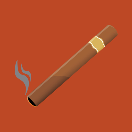 tobacco product: raster illustration of a luxury Havana cigar with label. Stock Photo