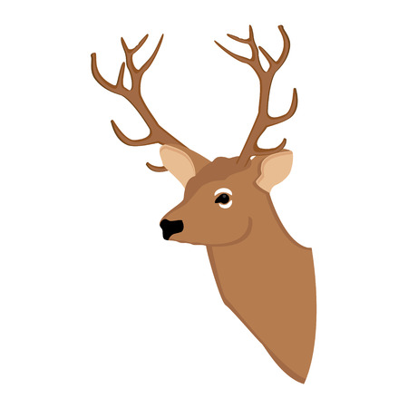wild animal: Vector illustration deer head. Forest animal. Wild animal. Reindeer Illustration
