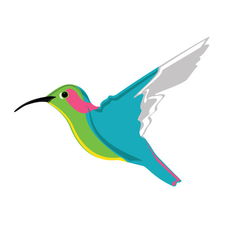 hover: Vector illustration small exotic hummingbird. Colorful humming bird icon