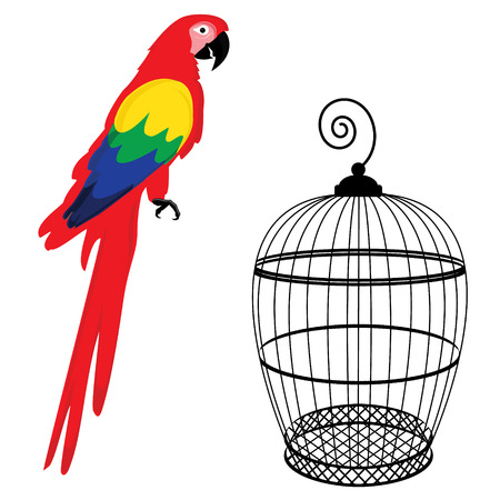 Vector illustratie kleurrijke ara papegaai en vogelkooi. Mooie Ara. Cartoon rode papegaai