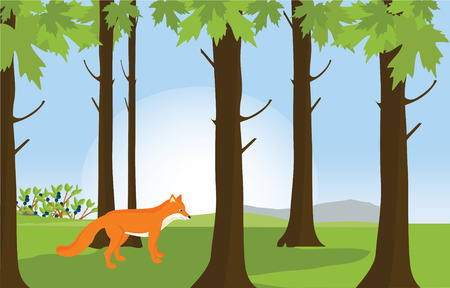 bush babies: Vector illustration green sunny forest landscape and red cute fox. Forest background