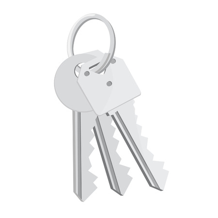 safely: Bunch of keys, house keys, set keys