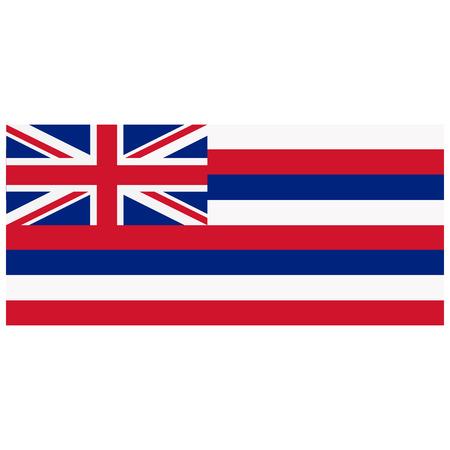hawaii flag: Vector illustration Hawaii flag vector icon. Rectangular national flag of Hawaii. Hawaii flag button